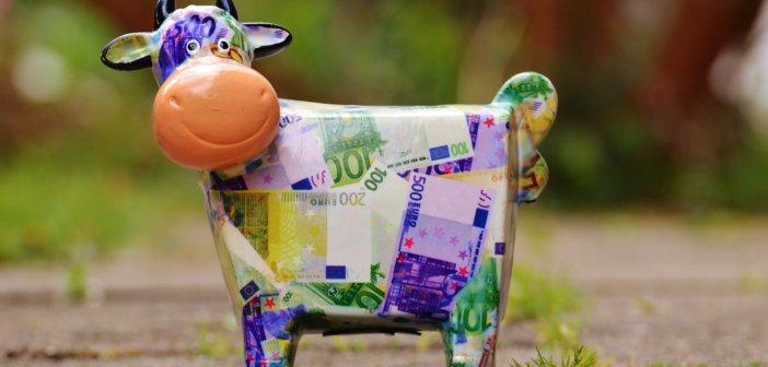 animal-bank-note-blur-164627